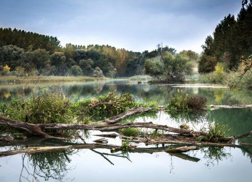 3 letni Kacper znaleziony w rzece